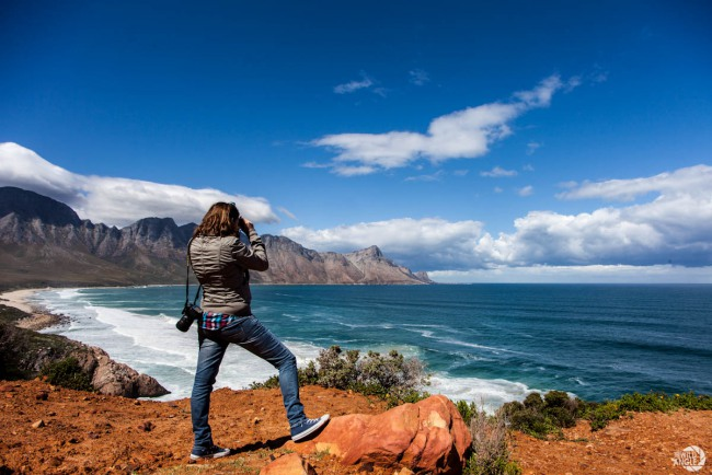 whale_coast_south_africa_01
