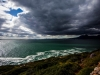 whale_coast_south_africa_03